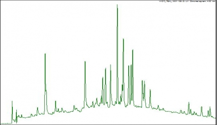 Polyphenols Chromatograph 2-440x254